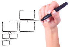 Female hand drawing chart. Female hand drawing black chart in whiteboard Royalty Free Stock Photo