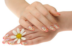 Female hand and flower Royalty Free Stock Photo