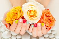 Female hand on flower Stock Photography