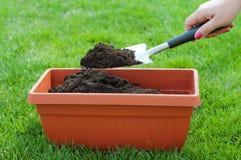 Early Spring gardening. Female hand hanging garden shovel wit soil Royalty Free Stock Image
