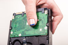 Female hand with Hard Drive on white Royalty Free Stock Image