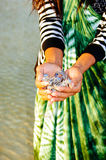 Female hand having bunch of small crabs in her hands. woman catching carbs in the sea,.  royalty free stock image