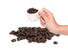 Female hand hold cup of coffee beans on white backgroun Stock Image