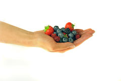 Female hand holding berries. On white Royalty Free Stock Images
