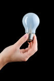 Female hand holding bulb. Stock Image