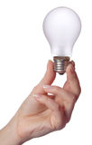 Female hand holding bulb Royalty Free Stock Images