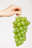 Female hand holding a  bunch of grapes Royalty Free Stock Photography