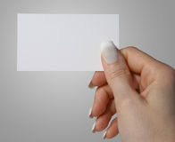 Female Hand Holding Business Card. A close up of a female hand holding a business card.  Plenty of space for your own text or copy Stock Image