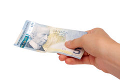 Female hand holding Canadian money. Isolated on a white background Stock Images