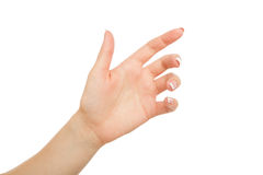 Female hand holding card, phone or other, crop, cutout Stock Photos