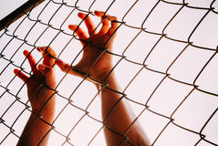 Female hand holding on chain link fence Stock Photography