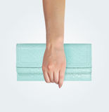 Female hand holding clutch Stock Photography