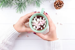 Female hand holding cup of hot cocoa or chocolate with marshmallow Stock Photo
