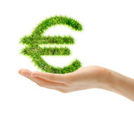 Female hand holding euro sign. Made of green grass Stock Photography
