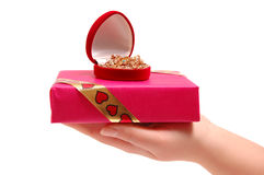Female hand holding a gift. The female hand holding a gift Royalty Free Stock Photography