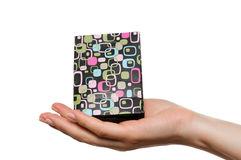 Female hand holding a gift box Stock Images