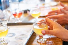 Female Hand Holding Glass of Micro Brew Beer At Bar.  royalty free stock photos