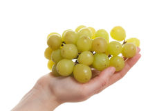 Female Hand Holding Green Grapes Stock Photos