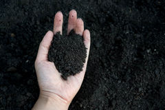 Female hand holding a handful of rich fertile soil that has been newly dug over or tilled in a concept of conservation. Of nature and agriculture. Blurred Stock Photos