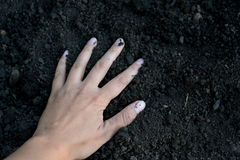 Female hand holding a handful of rich fertile soil that has been newly dug over or tilled in a concept of conservation. Of nature and agriculture. Blurred Stock Images