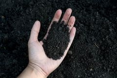 Female hand holding a handful of rich fertile soil that has been newly dug over or tilled in a concept of conservation of nature a. Nd agriculture. Blurred Stock Photos