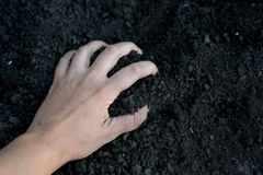 Female hand holding a handful of rich fertile soil that has been newly dug over or tilled in a concept of conservation. Of nature and agriculture. Blurred Stock Image