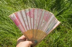 Female hand holding open a bamboo fan on a grass background, copy space stock photos