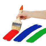 Female hand holding paint brush isolated on white background. Stock Photos
