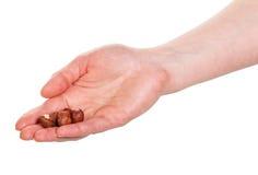 Female hand holding  peeled hazelnuts isolated on white background. Stock Photography