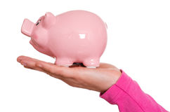 Female hand is holding a piggy bank Royalty Free Stock Photography