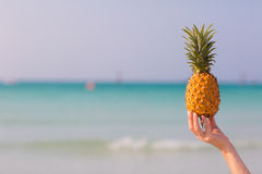 Female hand holding pineapple on sea background. Female hand holding pineapple on blue sea background stock images
