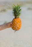 Female hand holding pineapple on sea background. Female hand holding pineapple on blue sea background, water splashes stock photography