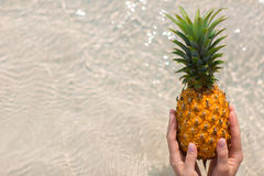 Female hand holding pineapple on sea background. Female hand holding pineapple on seashore background stock photos