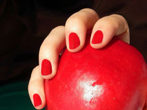 Female hand holding red apple Royalty Free Stock Photography