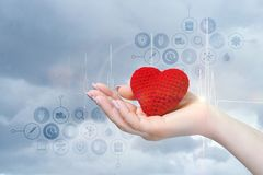 An female hand holding a red heart stock images