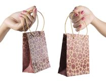 Female hand holding shopping bag Stock Images