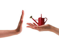Female hand holding small red watering can Royalty Free Stock Image