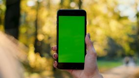 Female hand holding smartphone with green screen. Girl using mobile phone while walking in the autumn park. Back view stock video