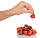 Female hand holding strawberry with cream isolated on white background. Royalty Free Stock Photos