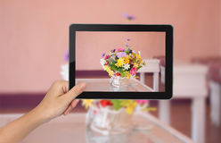 Female hand holding tablet PC with flower pictures on the screen Stock Images