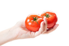 Female hand holding two tomatoes on white background Stock Photography