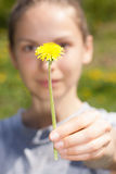 Female hand holds a dandelion flower Royalty Free Stock Photos