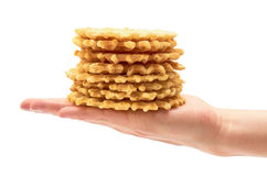 Female hand holds homemade crisp Waffle. isolated on white background.  Stock Photography