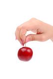 The female hand holds one plum Royalty Free Stock Photo