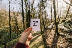 Female hand holds a pice of paper with inscription here and now. On a forest background Royalty Free Stock Image