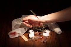 Female hand injured with broken glass in dark wood. Female hand injured with broken glass in a dark wood royalty free stock images