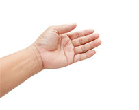 Female hand on the isolated Stock Photography