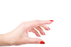 Female hand on the isolated background Royalty Free Stock Photo