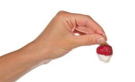 Female hand keeps strawberry in cream Stock Photography