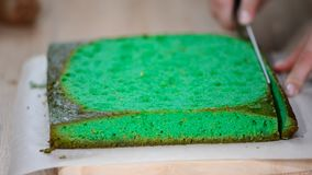 Female hand with a knife cuts the green sponge cake.  stock video footage